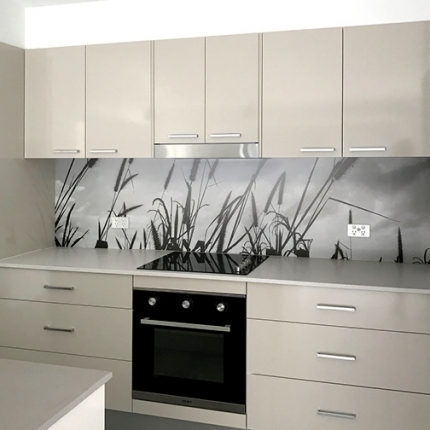Custom Splash Back